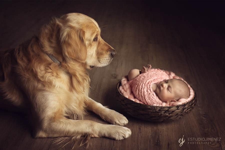 Fotos de bebés con mascota